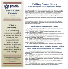 your story fact sheet